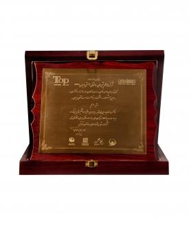 کسب رتبه دهم در سومین جشنواره ده شرکت برتر صنعت ساختمان ایران